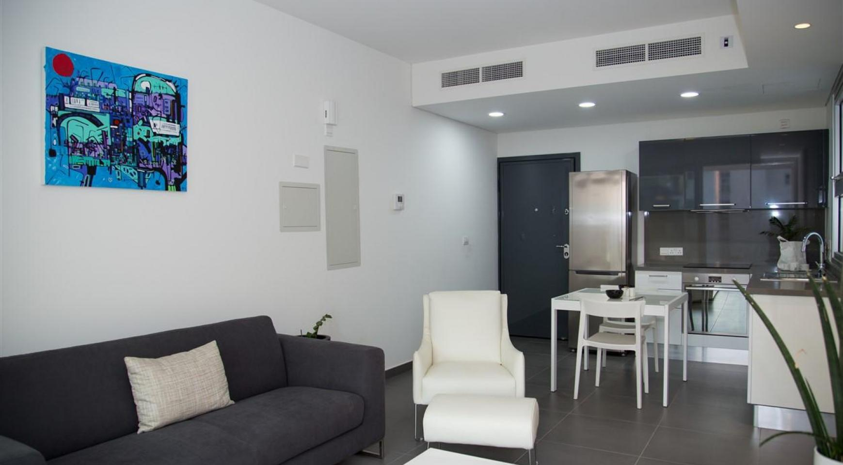 Luxury One Bedroom Apartment in a New Complex - 15