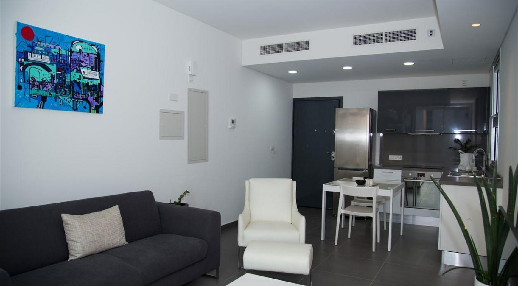 Luxury One Bedroom Apartment in a New Complex - 14