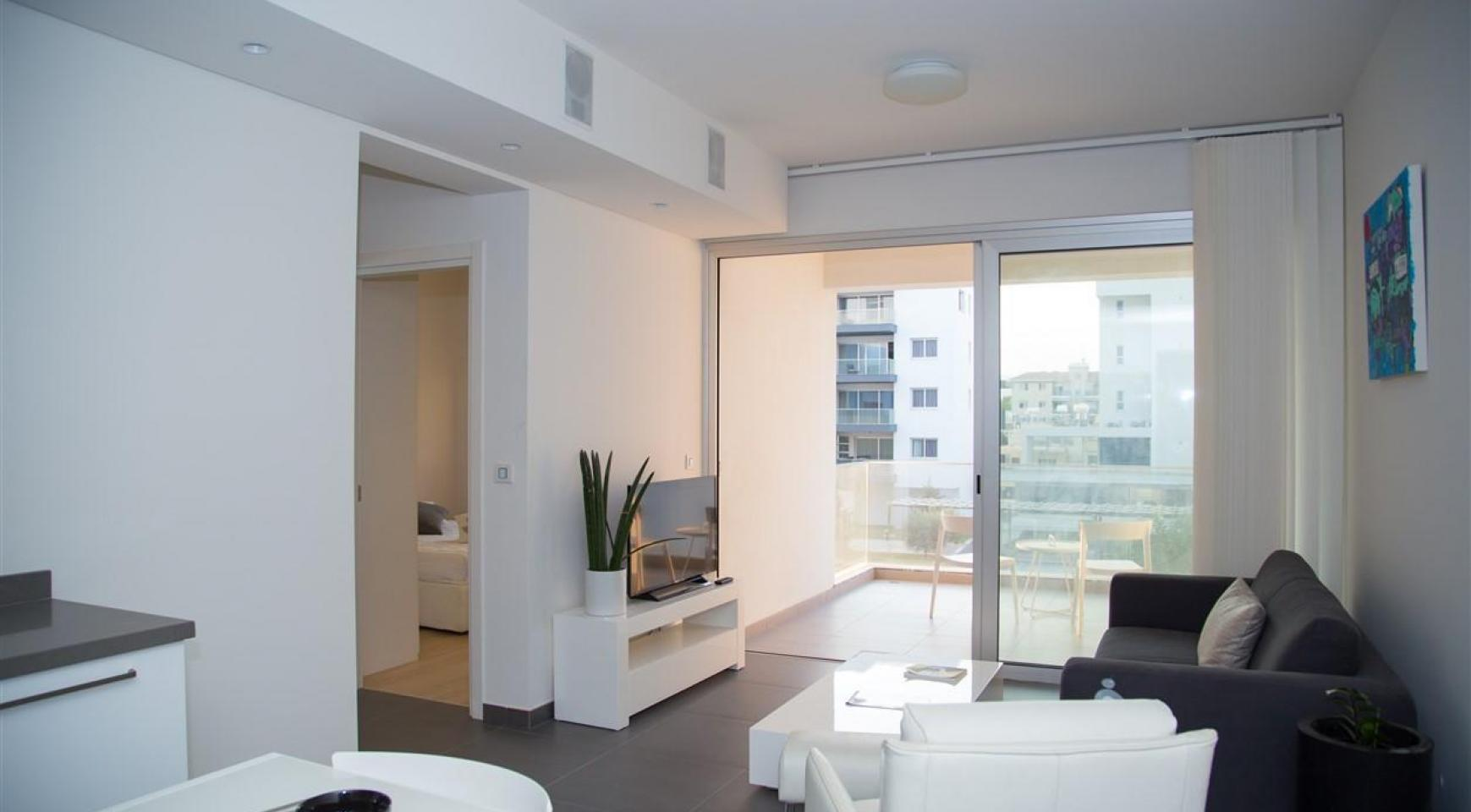 Luxury One Bedroom Apartment in a New Complex - 13