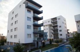 Elite 3 Bedroom Penthouse with private Swimming Pool on the Roof - 48