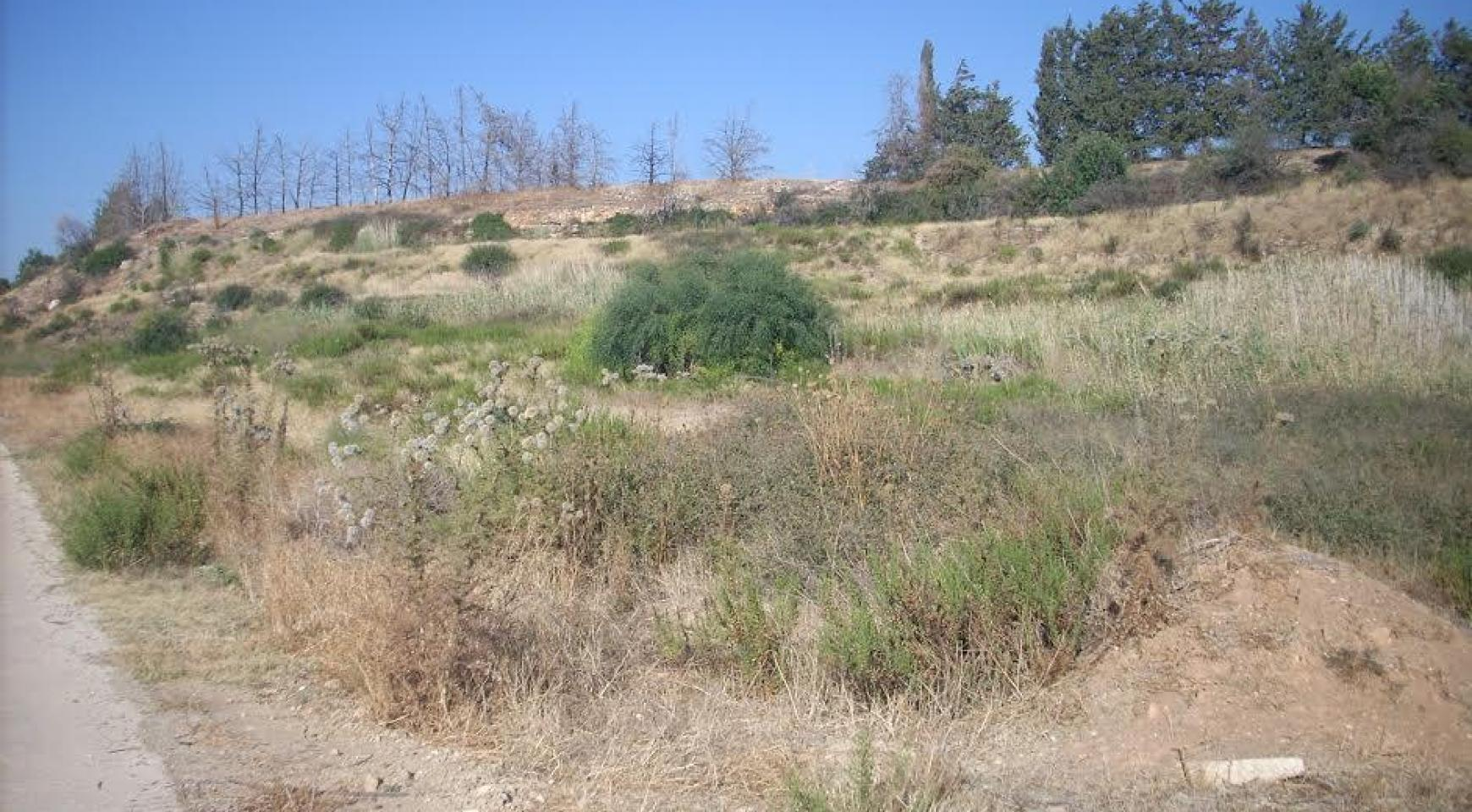 Large Building Plot with Sea Views in Kouklia - 5